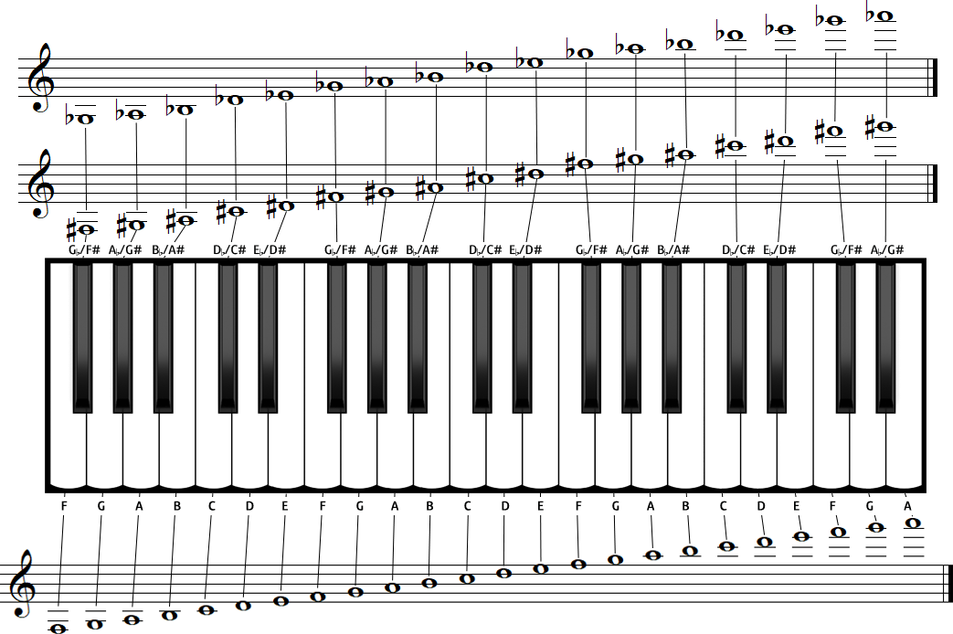 Accordion lesson for beginners: How to read music notation